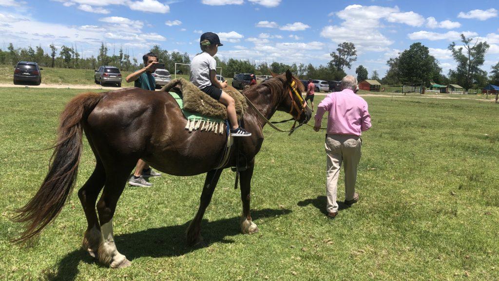 Pequeña Holanda dia de campo caballos